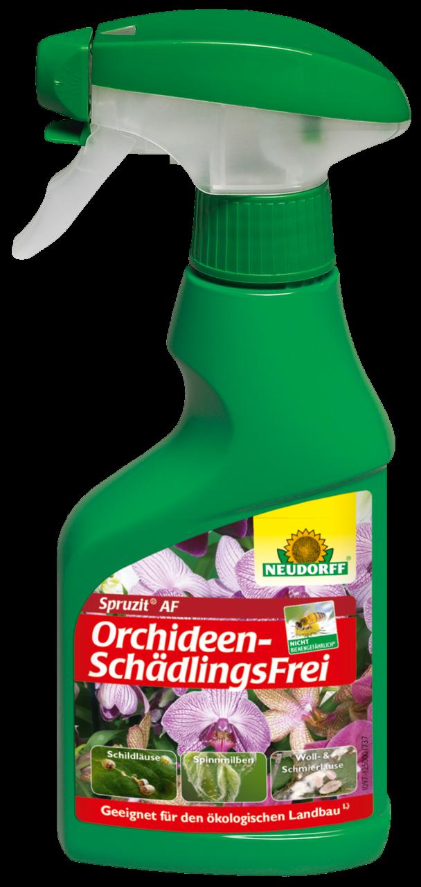 Orchideen SchädlingsSpray Spruzit